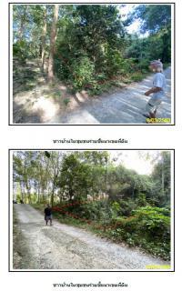 ที่ดินเปล่าหลุดจำนอง ธ.ธนาคารกรุงไทย หน้าเมือง เกาะสมุย สุราษฎร์ธานี
