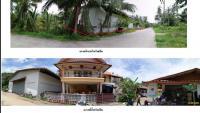 บ้านเดี่ยวหลุดจำนอง ธ.ธนาคารกรุงไทย เกาะพะงัน เกาะพะงัน สุราษฎร์ธานี
