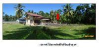 ที่ดินพร้อมสิ่งปลูกสร้างหลุดจำนอง ธ.ธนาคารกรุงไทย ตลิ่งงาม เกาะสมุย สุราษฎร์ธานี