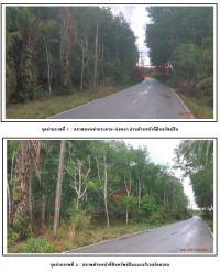 ที่ดินเปล่าหลุดจำนอง ธ.ธนาคารกรุงไทย บ้านยาง คีรีรัฐนิคม สุราษฎร์ธานี