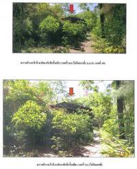 ที่ดินพร้อมสิ่งปลูกสร้างหลุดจำนอง ธ.ธนาคารกรุงไทย ท่าทอง กาญจนดิษฐ์ สุราษฎร์ธานี
