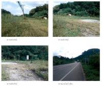 ที่ดินเปล่าหลุดจำนอง ธ.ธนาคารกรุงไทย คลองชะอุ่น พนม สุราษฎร์ธานี