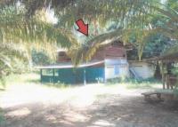 บ้านเดี่ยวหลุดจำนอง ธ.ธนาคารอาคารสงเคราะห์ ควนศรี บ้านนาสาร สุราษฎร์ธานี